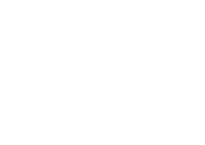 Blue Sky Buds - White Logo